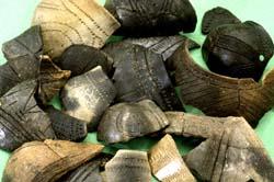 Ensemble bandkeramischer Scherben, die sich in großen Mengen in Herxheim fanden